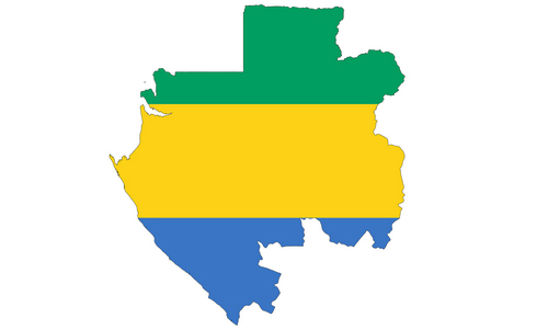 Statistics of Shiites in Gabon
