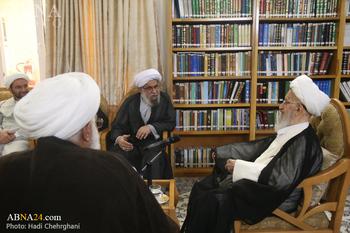 قدردانی آیت الله مکارم شیرازی از برگزاری همایش بین المللی حضرت ابوطالب(ع)