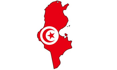 آمار شیعیان تونس