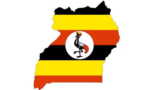 احصائيات حوول عدد الشيعة في أوغندا